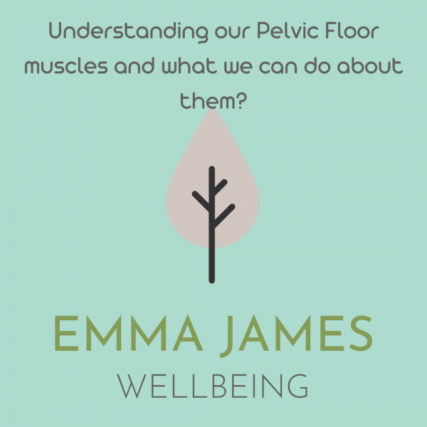 Emma James Physio Guest Blog #1: Function of Pelvic Floor Muscles and What We Can do About Them