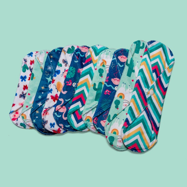 Cheeky Pants Cloth Sanitary Pads 10 MULTI-PACK - Minky - Mixed Use