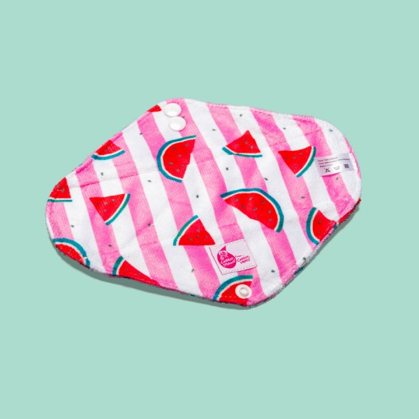 Cheeky Pants Cloth Period Pads 5 MULTI-PACK - Minky - Mixed Use